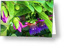 Passion Flower Ver. 18 Greeting Card