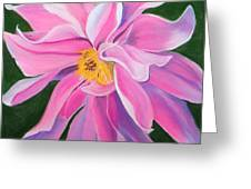 Passion Greeting Card by Lucinda  Hansen