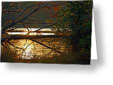 Past Consciousness Greeting Card