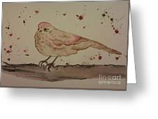 Pastel Bird Greeting Card