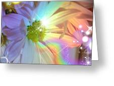 Pastel Daisy Rainbow Universe Greeting Card