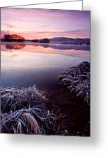 Pastel Dawn Greeting Card