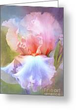 Pastel Iris Pleasure Greeting Card