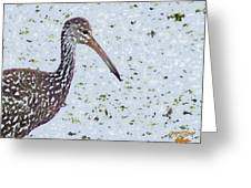 Pastel Limpkin Greeting Card
