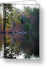 Pastels In Reflection  Greeting Card
