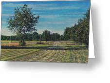 Pastoral Off Poplar Hill Road Greeting Card