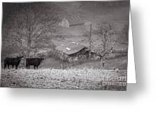 Pasture Field And Barns Greeting Card