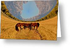 Pasture Of Another World Greeting Card
