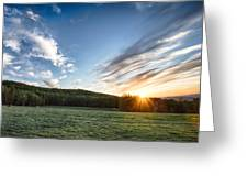Pasture Perfect Greeting Card