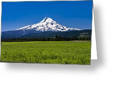 Pasture View Of Mt. Hood Greeting Card