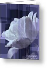 Patchwork Rose Greeting Card