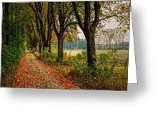 Path Along The Horses Meadow On The Farm Lovedayvale L B Greeting Card