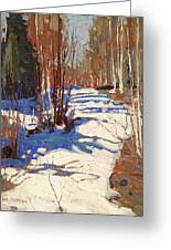 Path Behind Mowat Lodge Greeting Card
