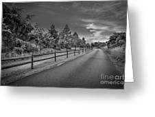Path - Black And White Greeting Card