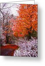 Path In Fall With Early Snowfall Greeting Card