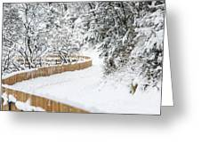 Path In Snow Greeting Card