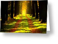 Path In The Forest 715 - Painting Greeting Card