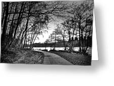 Path In The Park Greeting Card