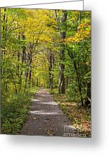 Path In The Woods During Fall Leaf Season Greeting Card