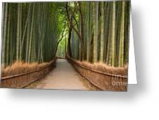 Path Through A Bamboo Grove In Kyoto Greeting Card
