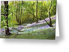 Path Through Bluebell Wood Greeting Card