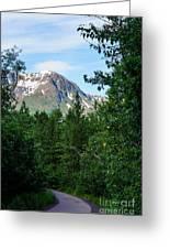 Path Through Nature Greeting Card
