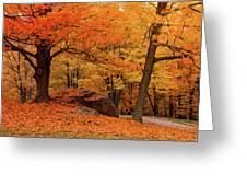 Path Through New England Fall Foliage Greeting Card