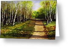 Path Through Silver Birches Greeting Card