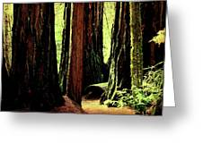 Path Through The Forest Edge . 7d5432 Greeting Card