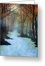 Path Through The Woods In Winter At Sunset Greeting Card by Jill Battaglia