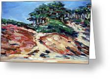 Path To Baker Beach Greeting Card by Sheila Tajima