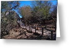 Path To Baobab Lodge Greeting Card