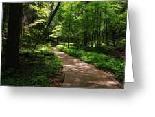 Path To Conkle's Hollow Greeting Card