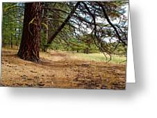 Path To Enlightenment 1 Greeting Card