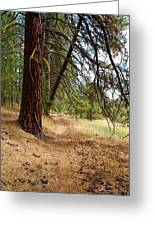 Path To Enlightenment 2 Greeting Card