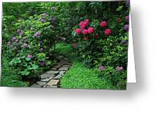 Path To Hidden Valley Greeting Card