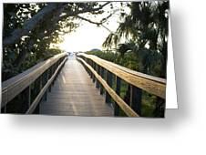 Path To Marco Island Beach Greeting Card