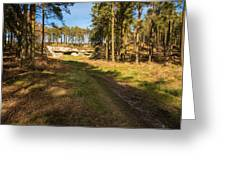 Path To St Cuthbert's Cave Greeting Card