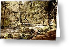 Path To The Crossing Greeting Card by John Winner