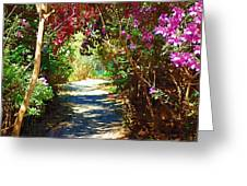 Path To The Gardens Greeting Card