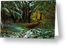 Path To The Light Greeting Card
