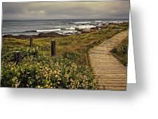Path To The Sea Greeting Card