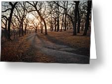 Path To The Sun Greeting Card