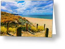 Path To Whiritoa Beach, Coromandel Greeting Card