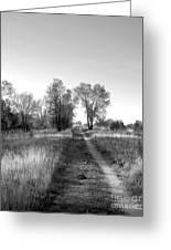 Path Yet Taken Greeting Card