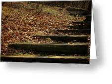 Paths Of The Seasons Greeting Card