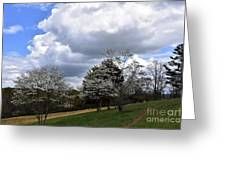 Pathway Along The Dogwood Trees Greeting Card