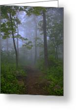 Pathway Through The Fog Greeting Card