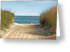 Pathway To Paradise Greeting Card