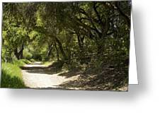 Pathway To Somewhere Greeting Card